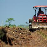 Perché la fusione e l'acquisizione nel settore agricolo sono favorevoli in Asia e in Europa?